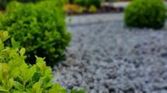 Nowoczesny i minimalistyczny ogród