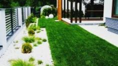 Bonsai w ogrodzie trawiastym - Polska Architektura XXL 2017 wielkopolska