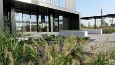 Projekt zieleni przy biurowcu i centrum logistycznym