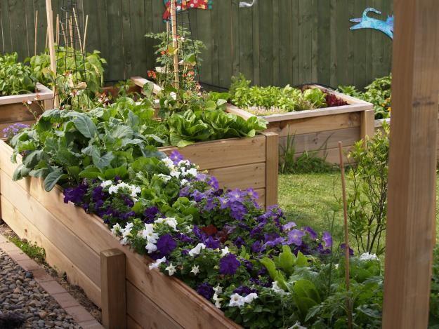 Ogród Warzywny W Mieście Strona 2 Ogrody W Różnych Stylach