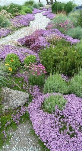 Dywany Z Kwiatow W Twoim Ogrodzie Trendy W Architekturze Krajobrazu Sztuka Krajobrazu