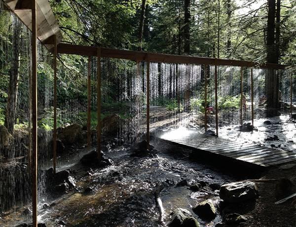 Kurtyna Wodna W Lesie Trendy W Architekturze Krajobrazu